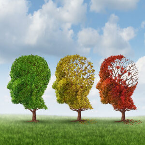 Elder Care in Goodyear AZ: Forgetfulness or Something More?